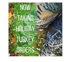 Turkey Promo