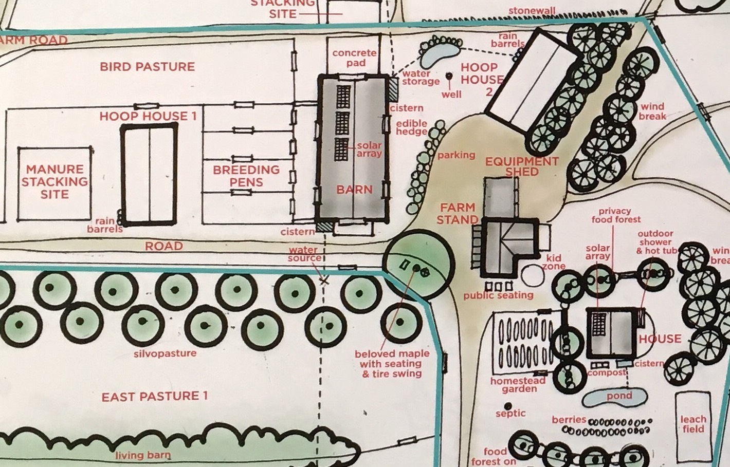 Perm Plan Detail