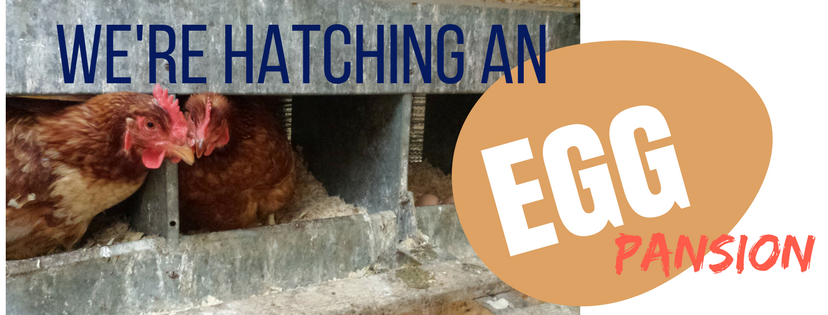 We're Hatching An