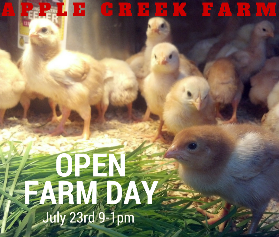 Copy of Open Farm Day 17-2(1)
