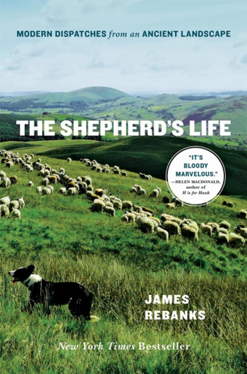 bookreview_shepherds_life